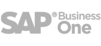 Conector SAP Business One prestashop